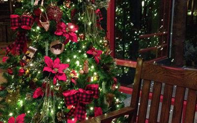 Vancouver Christmas Light Tours by Kavanagh   Kavanagh Limousine